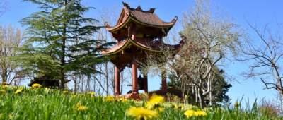 2017-03-Plum-Blossom-Festival-panorama-rid