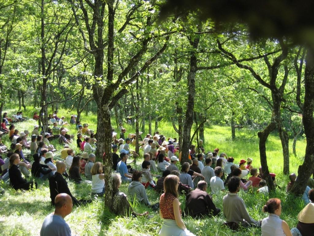 upper-hamlet-hillside-sitting-buddhas-1024x768